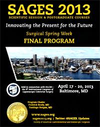 SAGES final program 2013