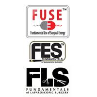 FUSE_FES_FLS