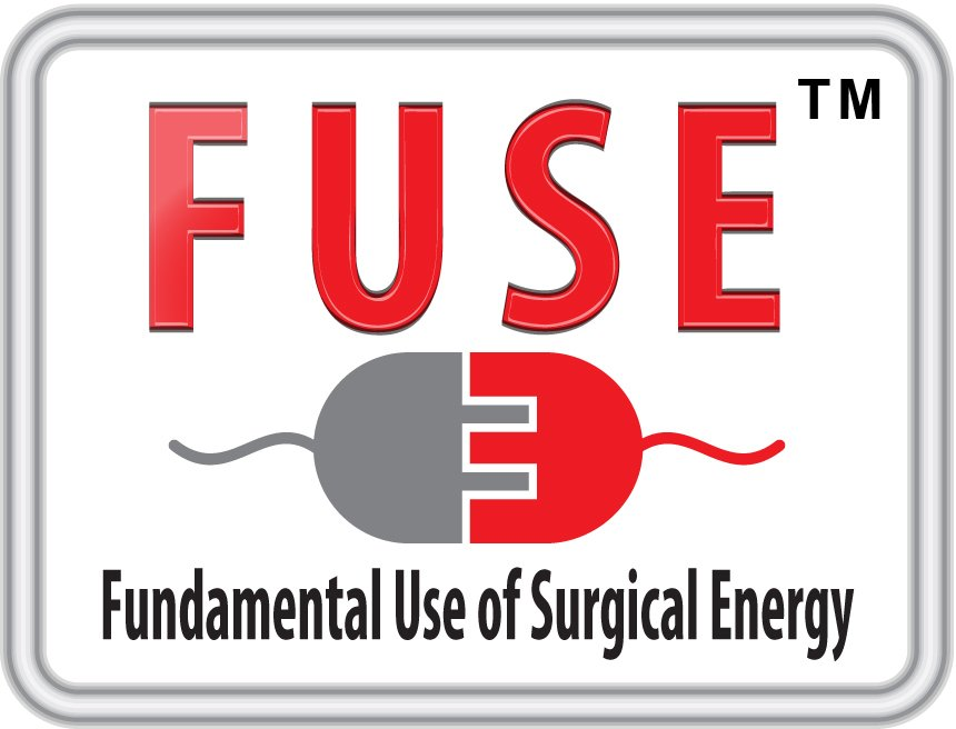 Fundamental Use of Surgical Energy (FUSE)
